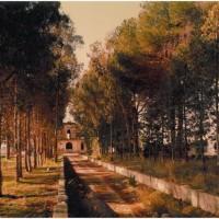 Il rudere di Villa Marsello